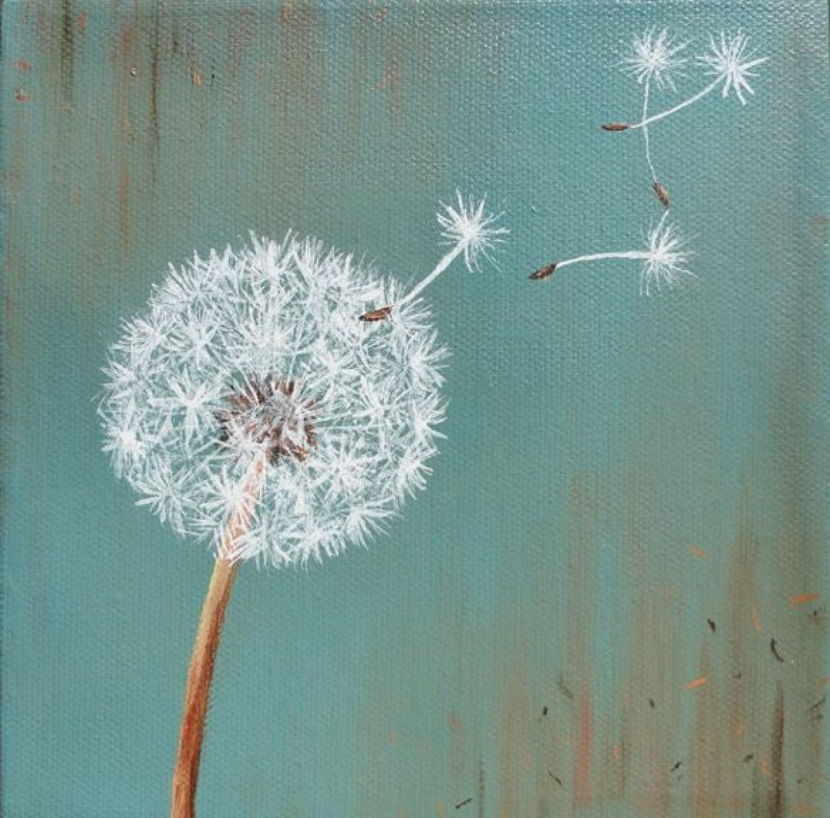 Dandelions & Daydreams